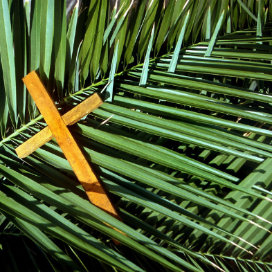 Palm frond and a cross